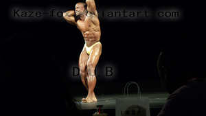 masters mens body building 3 by kaze-fox