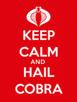 Keep Calm and Hail Cobra by adamcasey