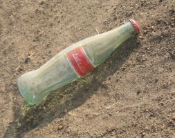 Wasteland Bottle by NaraProps