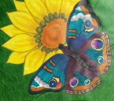 Promarkers, Butterfly, Sunflower by sarararon