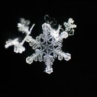 Snowflake symmetry by MadMike27