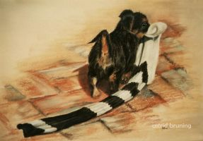 Collingwood Supporter - PASTEL DRAWING by AstridBruning