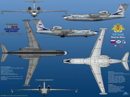 Beriev A-40 (Be-42) Albatross / Mermaid - Part 1 by haryopanji