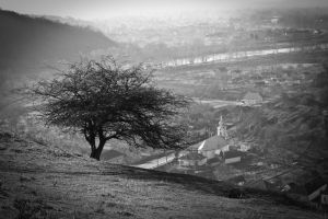 The Sentinel by mariustipa