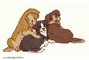 Team free chewing toys by FourDirtyPaws