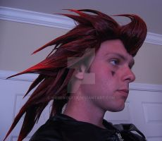 My First Axel Cosplay Photo by werewolf29