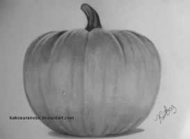 Realistic Drawing of a Pumpkin in Black and White by kakosuranosx