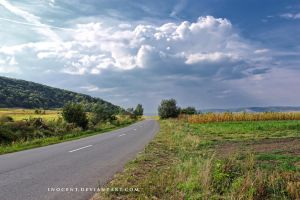 Transilvanian country road by inocent