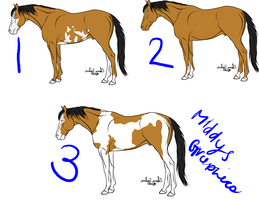 Horse Adoptables: BUCKSKINS by MiddysGraphics