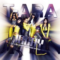 T-ARA - I Go Crazy Because Of You by Cre4t1v31