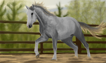 Horsey Shades of Grey by BunnyFroofroo