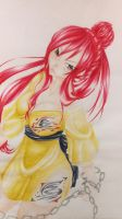 Erza 17/09/13 by lolDerCaptain