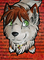 ACEO Samir by xCastra