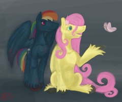 Killer Dash and Fluttershy by Madness-with-Reason