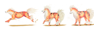 Arcanine Breeds II by queeniewolf