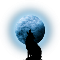 Moon with coyote silhouette by Viktoria-Lyn