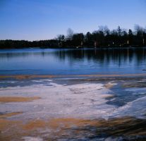 Mullica Freeze by Mossmill