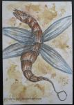 Dragon-fly ACEO by jacij