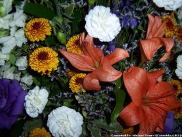 Mixed Flowers 4 by comwhizz101