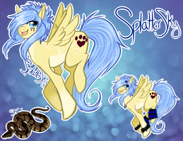 Splatterskys new ref by SplatterSky