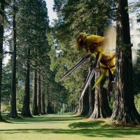 Beedrill, If Real