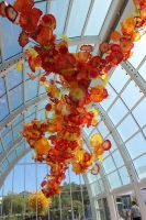Ceiling of Glass by eillahwolf