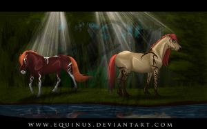 In Secret We Met by Equinus