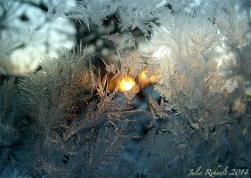 Frosty Winter Sunrise by jewels4665