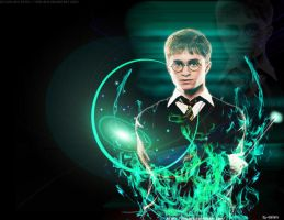 harry potter by idalia15