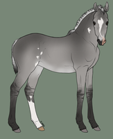 Silver Grullo Pangare Overo by RvS-RiverineStables