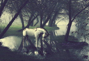 sigh no more by littlewillow-art