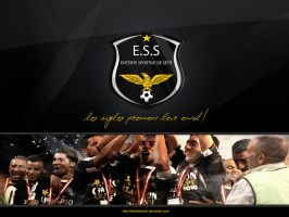 Wallpaper E.S.S Champions by elhadibrahimi