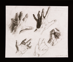 Hand Study by black-racoon