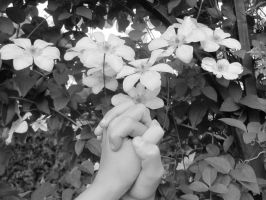 The Garden: Take My Hand B+W by en-visioned