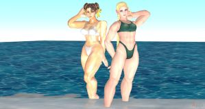 Chun Li and Cammy Ocean Fun II by cablex452