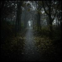 Creepy road... by MOSREDNA