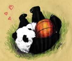 Basketball Panda by kitten9000