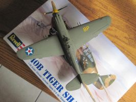 P-40B: 8th Pursuit Group: Top View by cloudyrainbow561