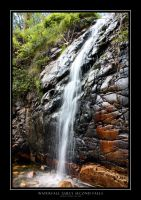 Waterfall Gully Second Falls by WiseWanderer