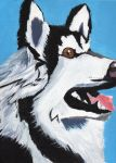 Pop Art Siberian Husky by CloudFlare62
