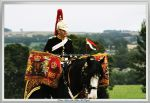Drum Horse - Blues and Royals by printsILike