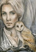 The Owl Keeper by Kuoma