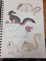 ADOPT A FLOOFY PET by White--Swallow