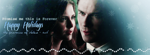 The Promise Of Delena - TVD by N0xentra