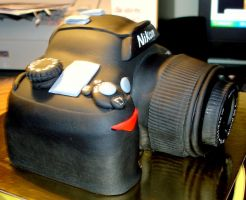 Camera cake side by buttercreamfantasies