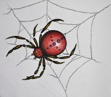 Spider by psychotoxicc