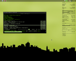 Green - Openbox by Fenixiie
