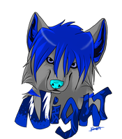 Badge Commision~ Night for Nightwolf950 by Darkstor1