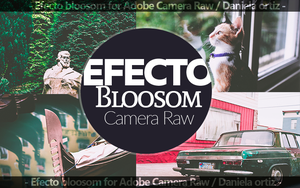 Efecto Bloosom for Photoshop [Tutorial] by Waatt