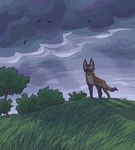 rain is coming by TheRoguez
